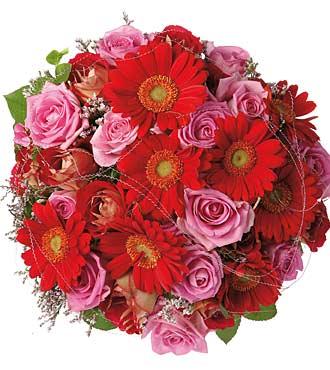 Roses & Gerberas Bqt
