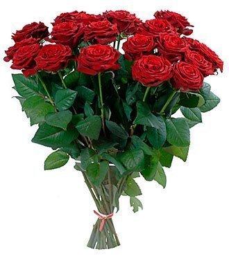 Vinous Roses -Classics