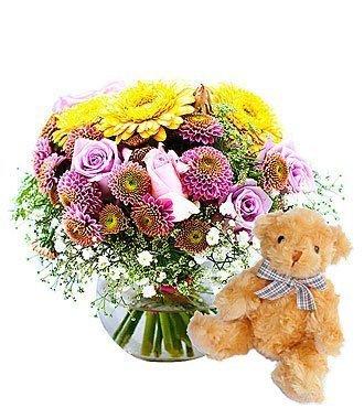 Morning Dew + Teddy bear