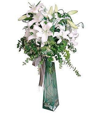 Arrangement of White Lili