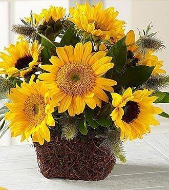 Perfect Sun Bouquet Exqui