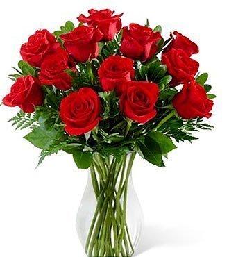 Blooming Masterpiece Rose