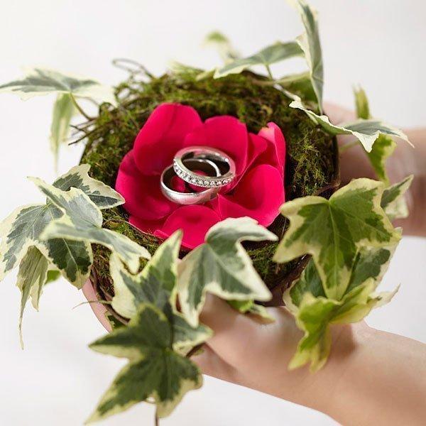 El Nido  Rosa Lila