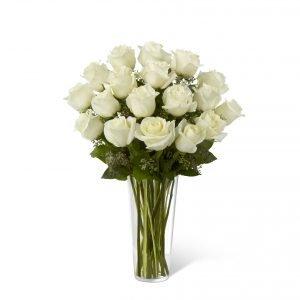 Rosas Blancas D